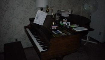Skilled piano teacher in Briargate