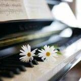 Piano Lessons. Start Something New!