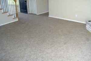 Carpet Repairs/ Pet Damage and Stretching/ New Sales and Installations
