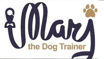 Dog Training that WORKS!