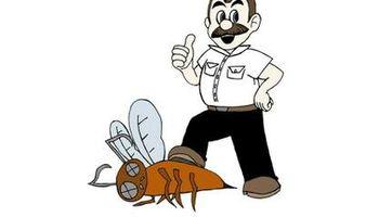 JimmyBugs Pest Control