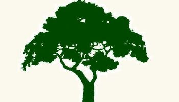 Sequoia Outdoor Services. Lawn & Tree Care
