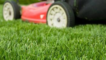 Cutter's Edge Lawn Care