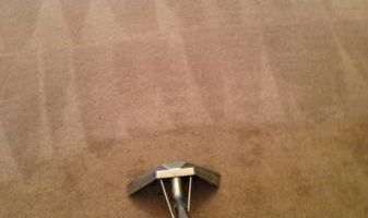 Carpet Cleaning Wake County