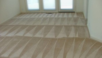 African American owned Carpet Cleaning & Shampoo only $20/room