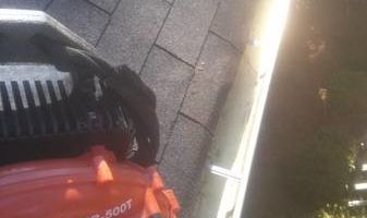 Gutter cleaning , Yard cleaning, Landscaping service....