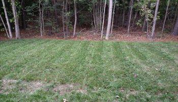 Grass Cut/Mowing, Power Washing, Aeration....