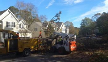TREE WORK. FREE ESTIMATES!