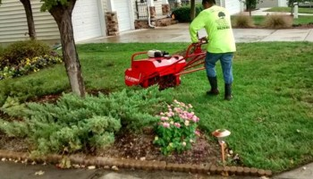 Lawn Care, Gardening & Landscaping by Orlando Flores