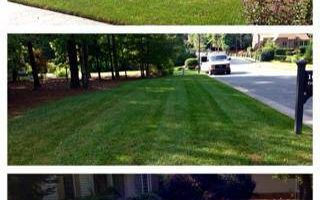 Romero Landscaping Services. Commercial & Residential