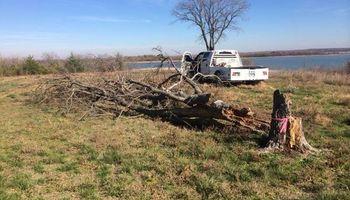 Farm & Ranch Tree & Brush removal. Haul off!