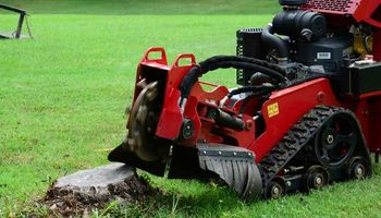 It's Time To Get Rid of Those UGLY STUMPS! Call Today!