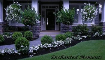 Professional and Locally Landscape. Spring Specials!