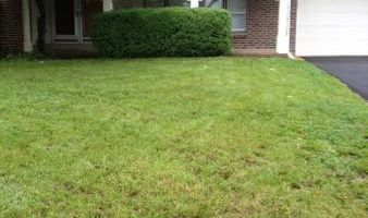 Camacho's lawn care & landscaping