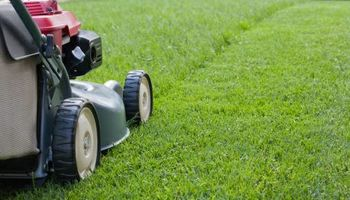 Lawn Mowing in Blue Springs starting $25