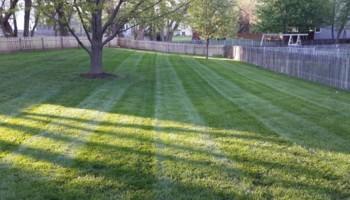 Noah's Lawn Care. MOWING $30