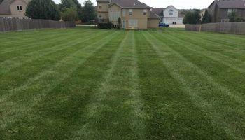 C&C Complete Lawn Care