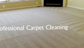 Bosma Westonka Carpet Cleaning. REASONABLY PRICED! SINCE 1986