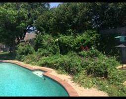PROFESSIONAL LANDSCAPING -  Big Tex