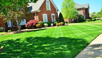 Tilleys Lawn. Lawn Mowing Specials - As Low As $25 - Ends April 8th