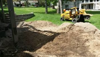 Tree Stump Grinding (have openings this week)