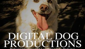 Digital Dog Productions. Video Production Service