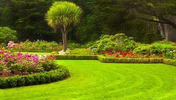 SIMY's Lawn Service