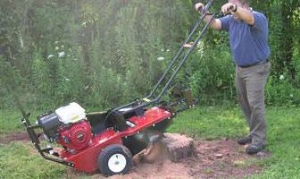 "Stump Grinding $50 (24"" wide)"