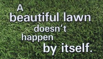 Lawns mowed for $30