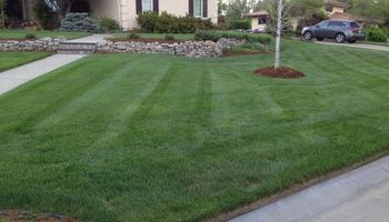 Commercial Lawn Service - Mowing, Edging, Trimming