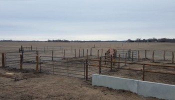 AG Fence Services / Pasture-clearing/ Hedge Posts