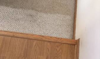 Dirty Carpets? Get the carpet for one level of your home!