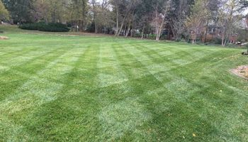 Prestige Lawn Mowing At Reasonable Prices