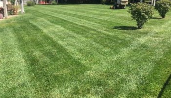 Laverentz lawn & landscape - Mowing and landscape work