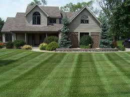 Jay's landscape - 6,000 square ft lawn for 20.00