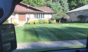 Shima's Landscaping services. Experienced and Insured