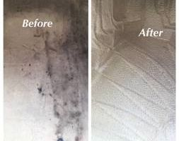 Elegant Touch Auto Detailing. 40$ Carpet and floor Deep cleaned