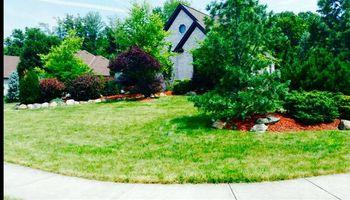 American Home Rescue & Contracting. Full service lawn care