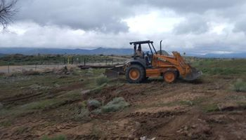 Weed/tree removal/tractor work