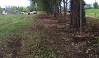 Land clearing and excavating