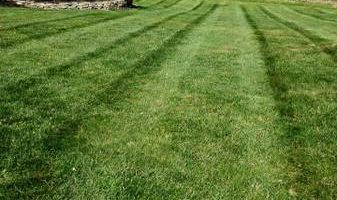Green Source Lawn Care & Landscaping LLC