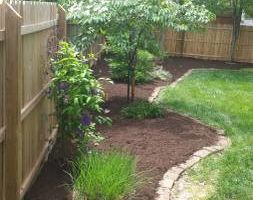 TREE SERVICE - LANDSCAPING - MULCHING