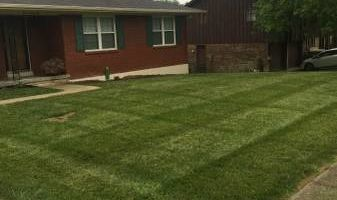 T&D Turf Management - INSURED - Mowing, Landscaping and MORE