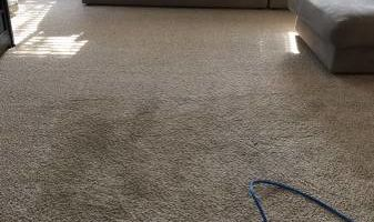 All American Carpet Cleaning. Deep carpet cleaning