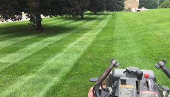 Purcell Lawn & Landscape, LLC. Grass Cutting, Lawn Maintenance, Mulching...