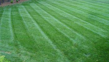 KMK Landscaping LLC - Grass Cutting, Mulching...