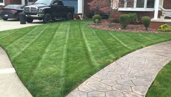 Proper Lawn Care by Pinkowski Landscape & Design