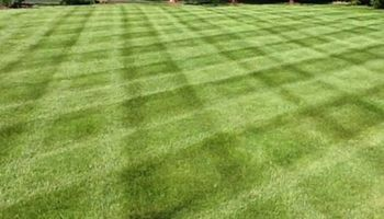 Alex's Landscaping - Complete Landscaping & MORE