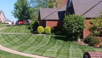 Premium Turf care & Lawn Manicuring