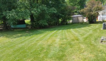Beamon's Professional Lawn Care